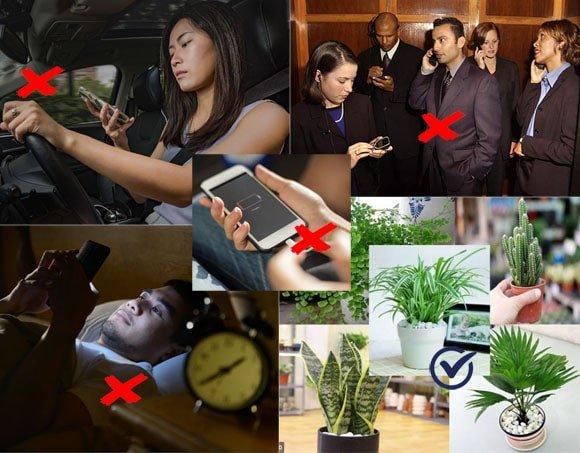Cách làm giảm tác hại của sóng bức xạ điện từ từ điện thoại, wifi, ipad,.. một cách hiệu quả
